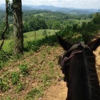 On horseback through the North Carolina mountains