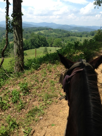 On horseback through the North Carolina mountains